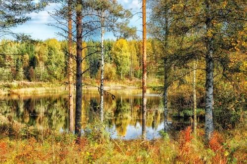 finland-500x332