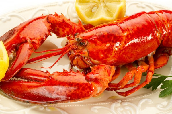 steamed-lobster